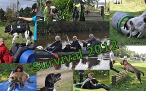 survival voor baas en hond 2012 3